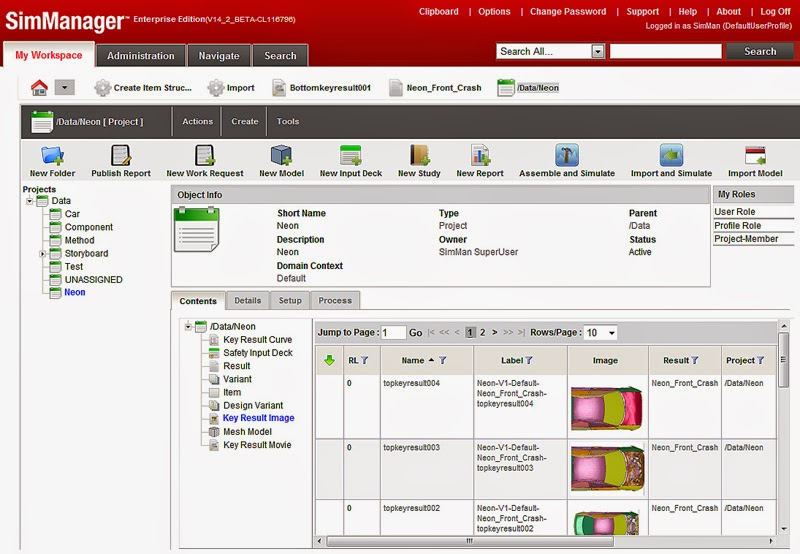 project management simulation software